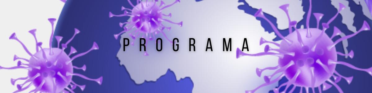 pandemia-sud-global_programa.png