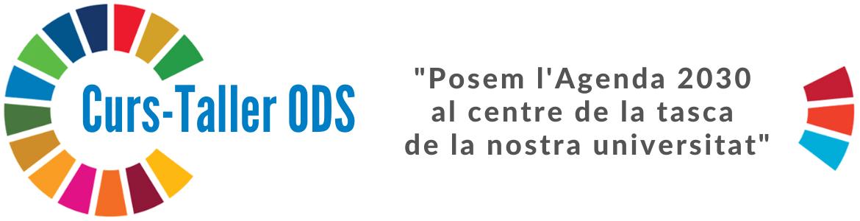 upc-rsu-curs_ods.png